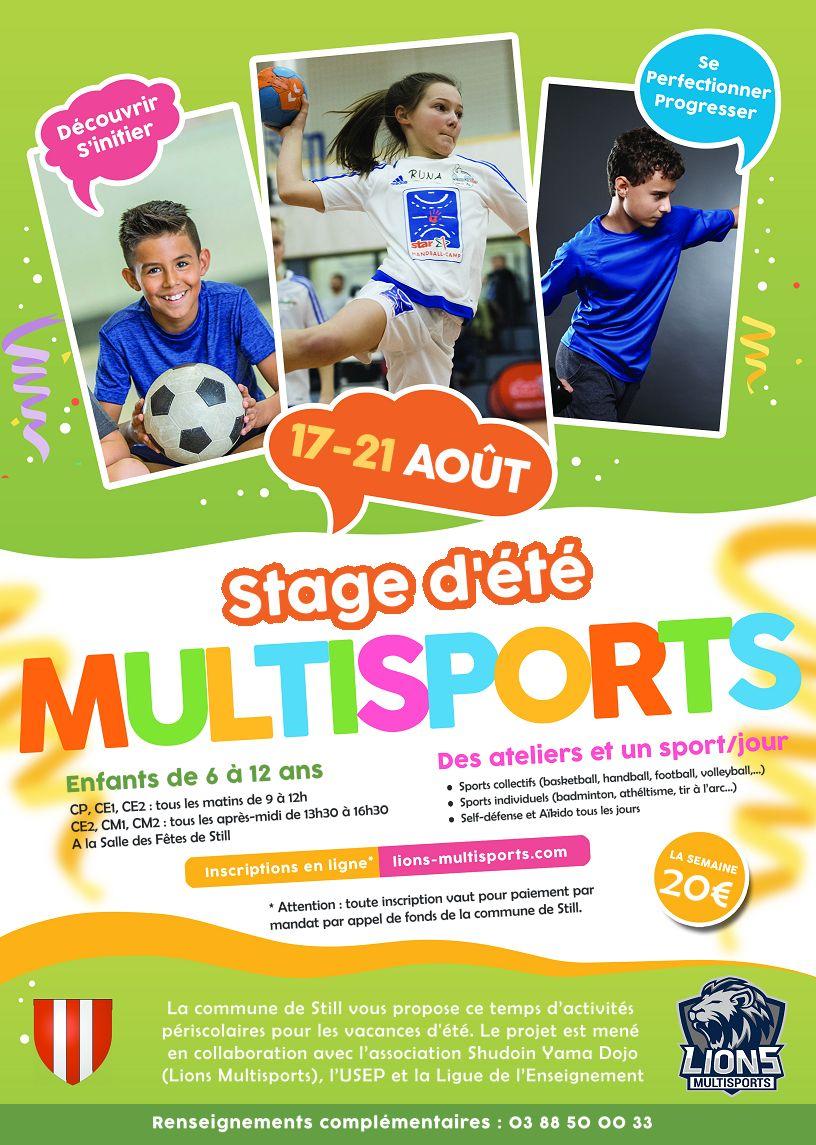 stage-multisports-still-lions-août-été