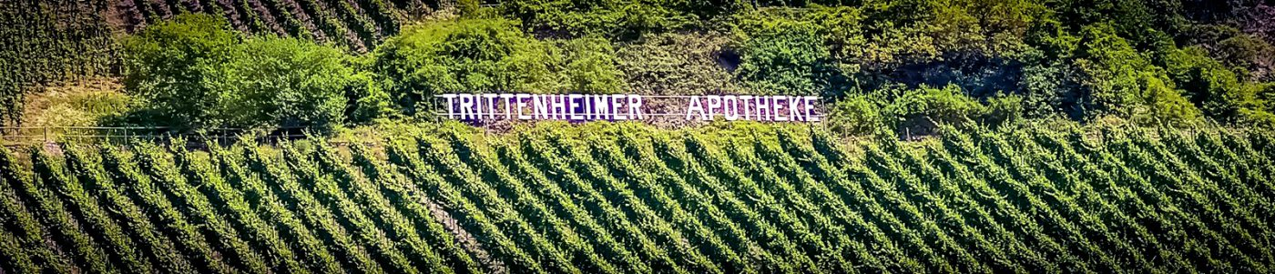 Moselle 11 Trittenheim vignoble 03